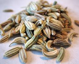 fennel seeds_