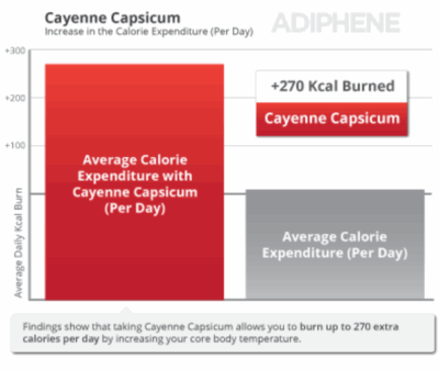 Cayenne capsicum burn fat