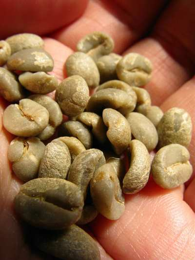 benefits of green coffee bean extract