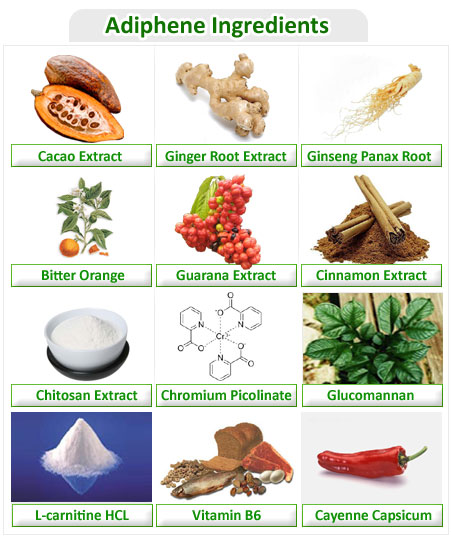 Ingredients in Adiphene